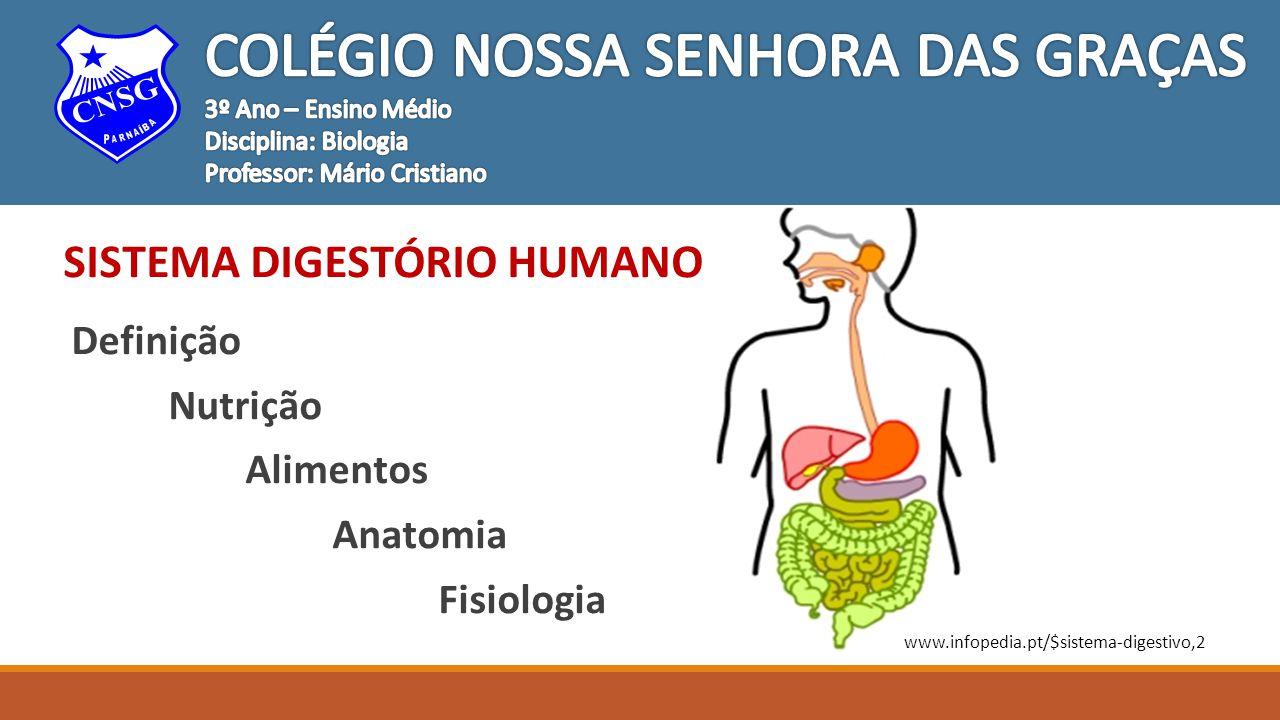 Sistema Digestório Humano Digestão É o conjunto de transformações fisioquímicas ou físico-químicas que os alimentos orgânicos sofrem para se transformarem em moléculas menores, hidrossolúveis e absorvíveis.