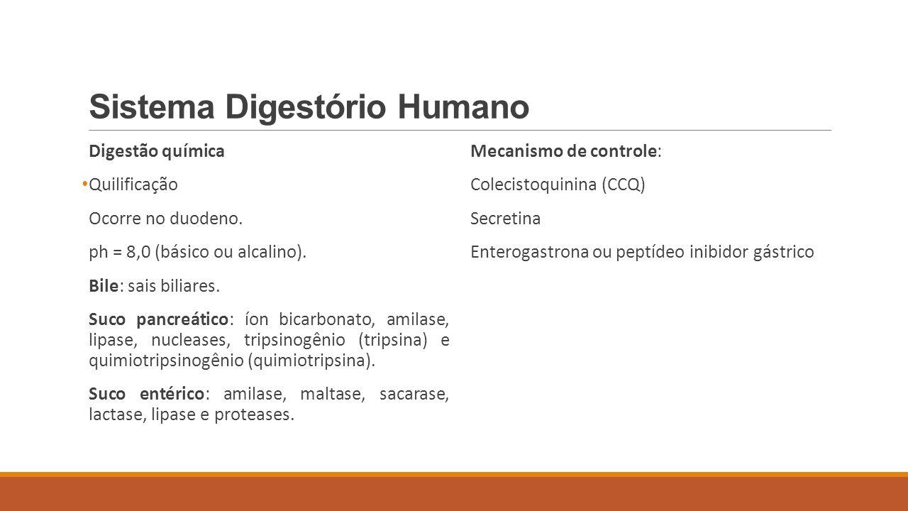 Sistema Digestório Humano Digestão química Quilificação Ocorre no duodeno. ph = 8,0 (básico ou alcalino). Bile: sais biliares. Suco pancreático: íon b