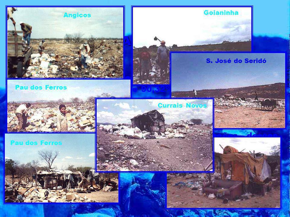 No levantamento da situação de residência dos catadores registra-se que 90,32% deles não residem nas áreas dos lixões e que o trabalho social de organ