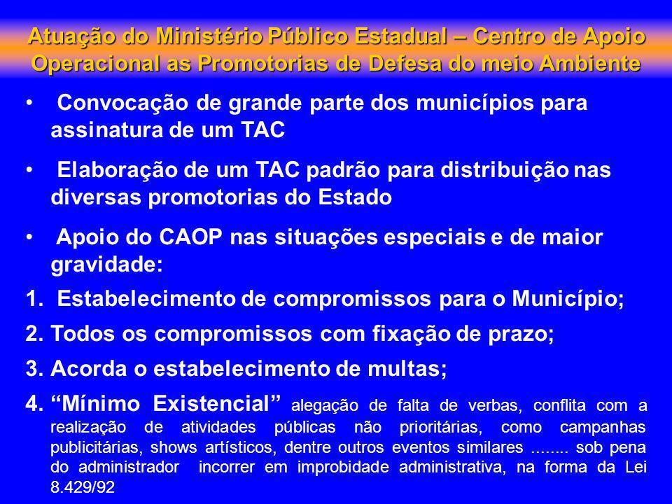 Convocação de grande parte dos municípios para assinatura de um TAC Elaboração de um TAC padrão para distribuição nas diversas promotorias do Estado A