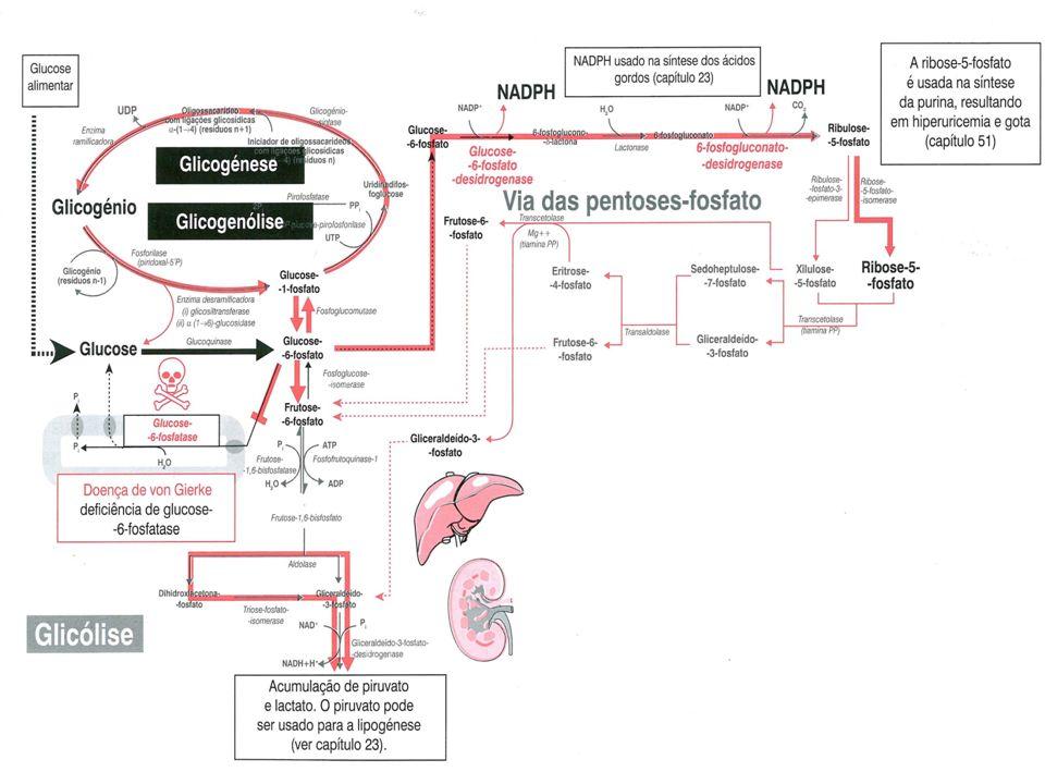 glicose-6-fosfato + H2O = glicose + Pi Deficiência G – 6 - Pase Piruvato Glicólise Lactato Piruvato Ácido Láctico Caso clínico: [lactato]=7,6 mM (N <2,1) [LDH]= 615 UI/L (N 105-333)
