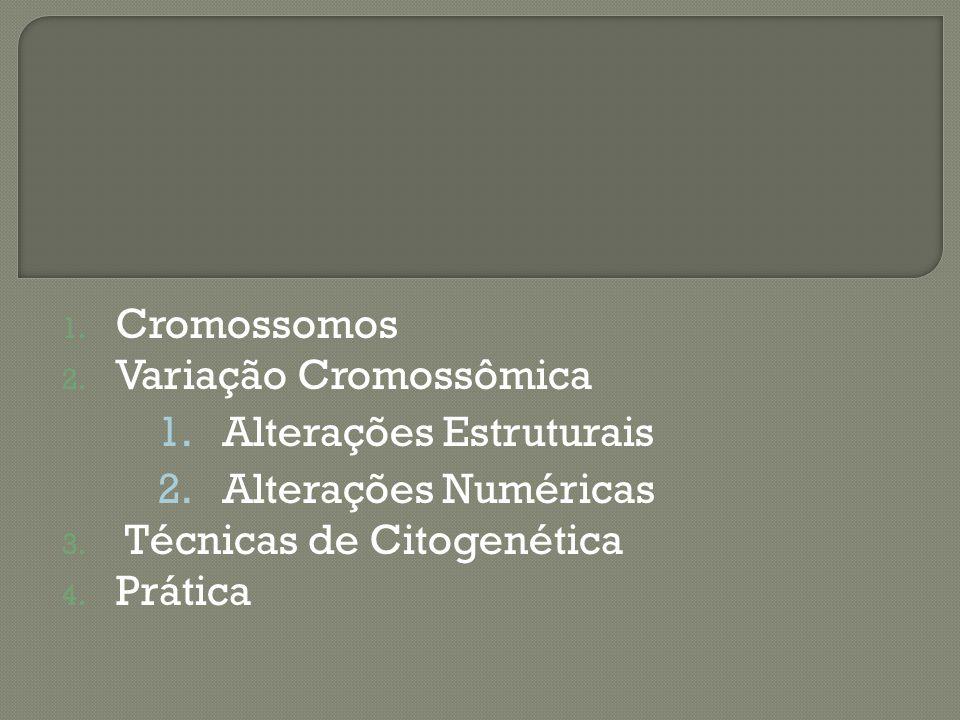 1.Cromossomos 2. Variação Cromossômica 1. Alterações Estruturais 2.