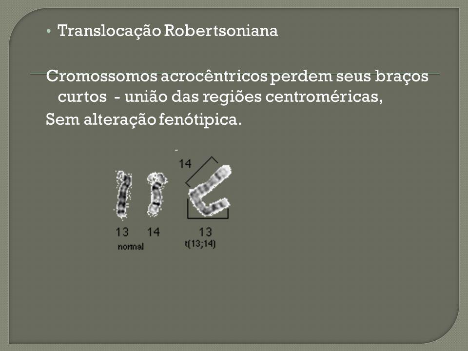 Translocação Robertsoniana Cromossomos acrocêntricos perdem seus braços curtos - união das regiões centroméricas, Sem alteração fenótipica.