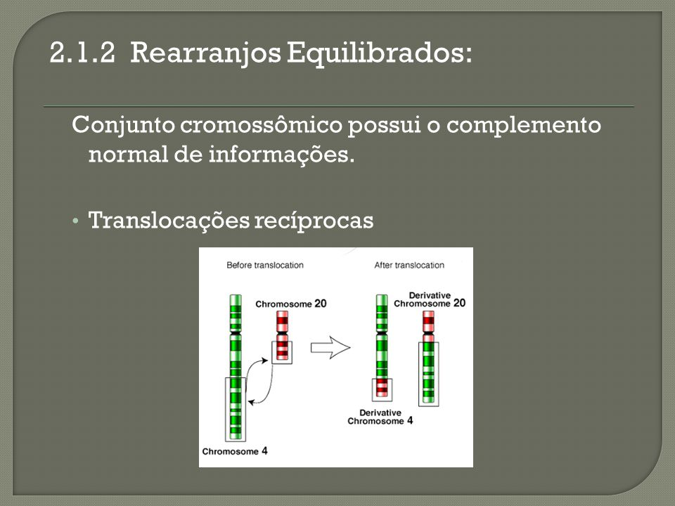 2.1.2 Rearranjos Equilibrados: Conjunto cromossômico possui o complemento normal de informações. Translocações recíprocas