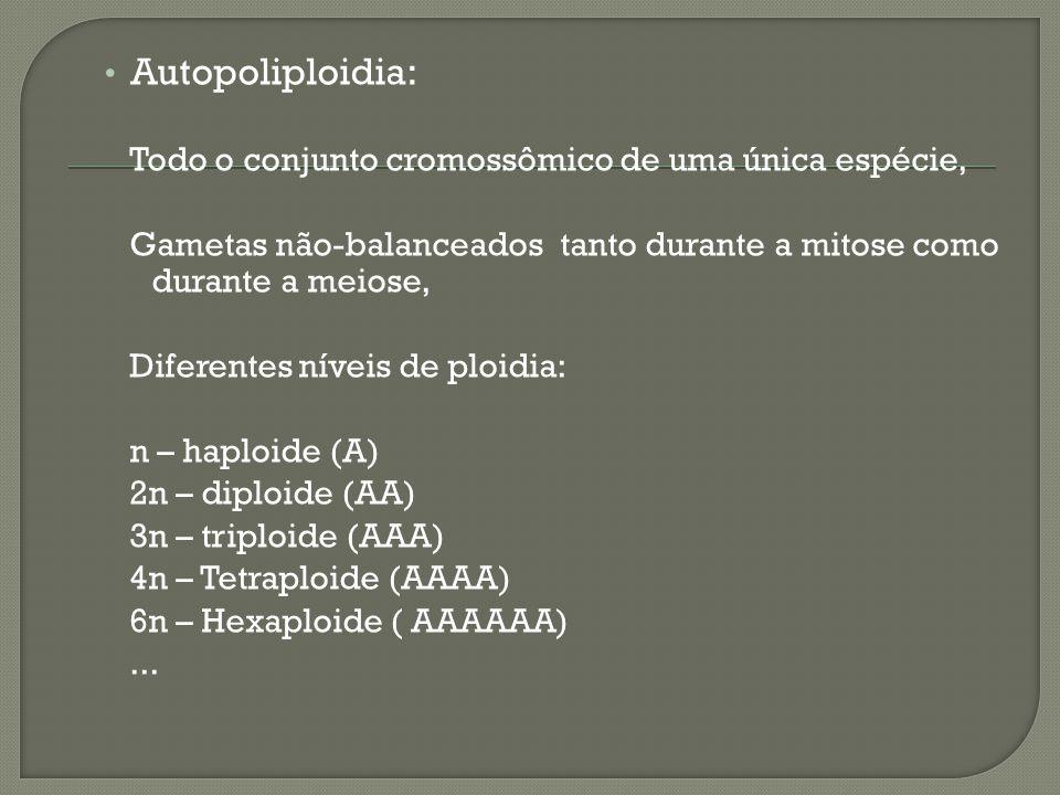 Autopoliploidia: Todo o conjunto cromossômico de uma única espécie, Gametas não-balanceados tanto durante a mitose como durante a meiose, Diferentes n