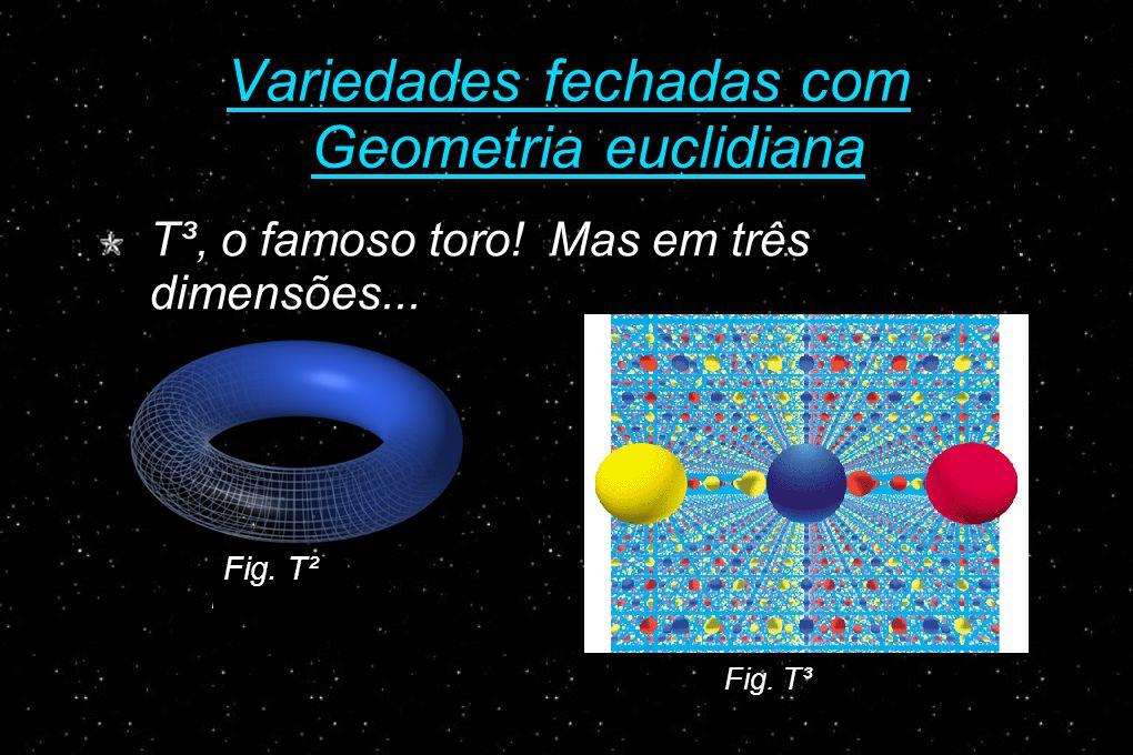 Variedades fechadas com Geometria euclidiana T³, o famoso toro.