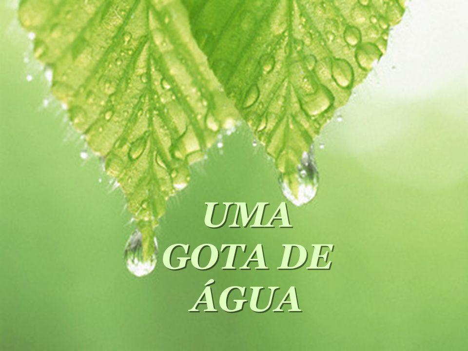 UMA GOTA DE ÁGUA UMA GOTA DE ÁGUA