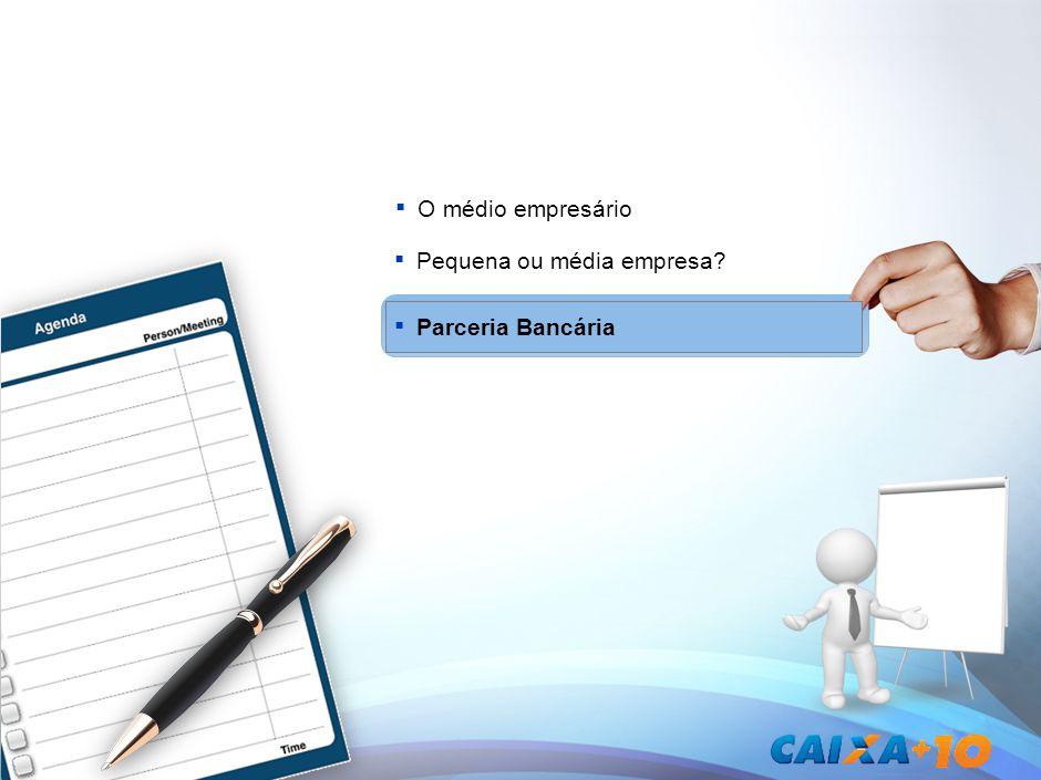 Parceria Bancária O médio empresário Pequena ou média empresa?