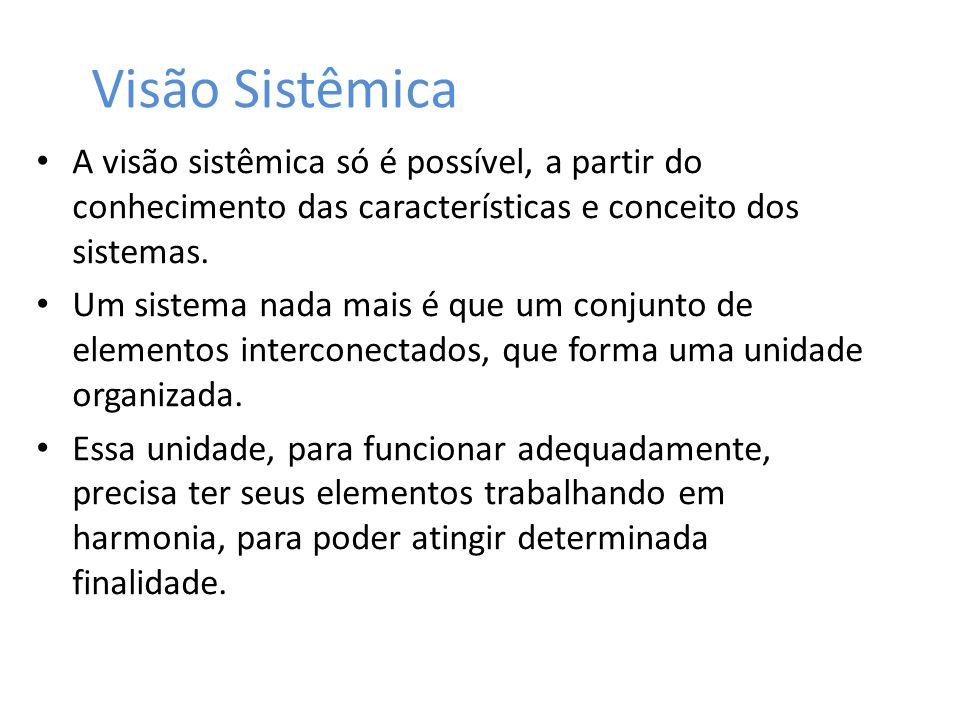 Visão Sistêmica A visão sistêmica só é possível, a partir do conhecimento das características e conceito dos sistemas. Um sistema nada mais é que um c