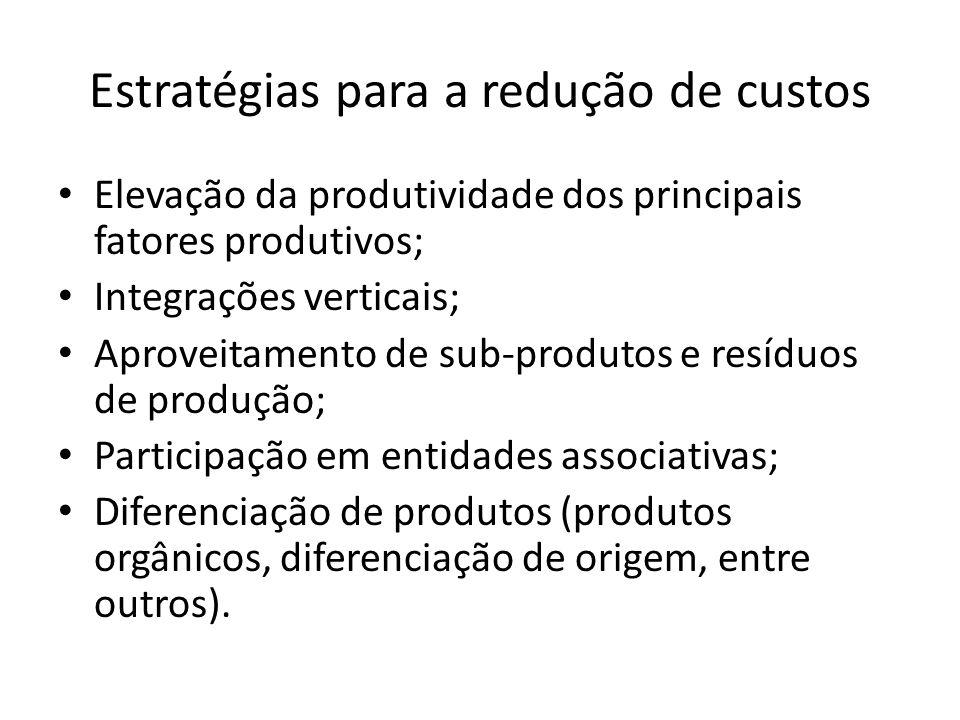 Estratégias para a redução de custos Elevação da produtividade dos principais fatores produtivos; Integrações verticais; Aproveitamento de sub-produto