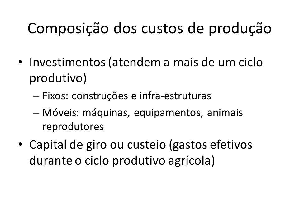 Composição dos custos de produção Investimentos (atendem a mais de um ciclo produtivo) – Fixos: construções e infra-estruturas – Móveis: máquinas, equ