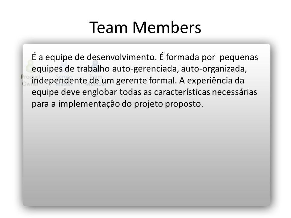 Team Members É a equipe de desenvolvimento. É formada por pequenas equipes de trabalho auto-gerenciada, auto-organizada, independente de um gerente fo
