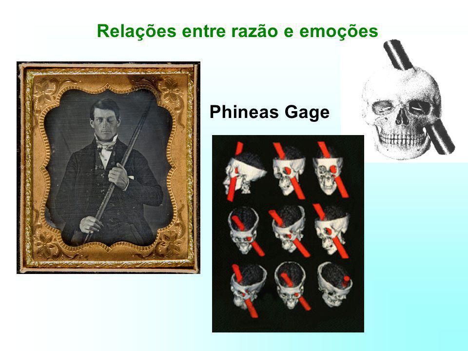 Relações entre razão e emoções Phineas Gage