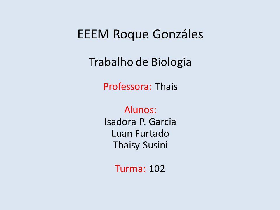 EEEM Roque Gonzáles Trabalho de Biologia Professora: Thais Alunos: Isadora P. Garcia Luan Furtado Thaisy Susini Turma: 102
