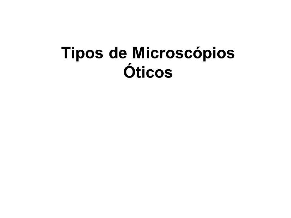 Tipos de Microscópios Óticos
