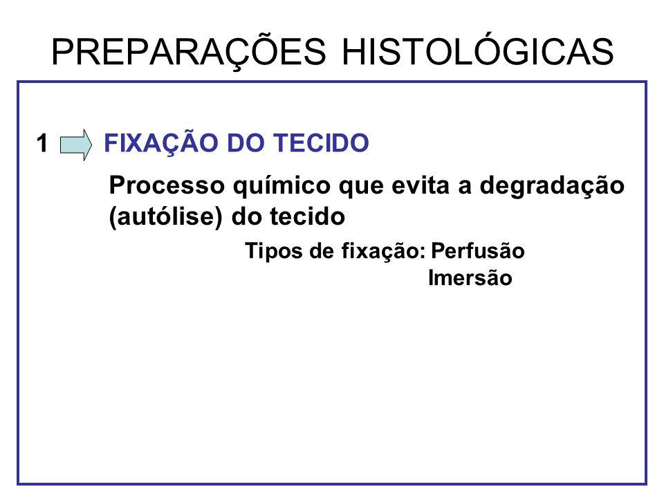 PREPARAÇÕES HISTOLÓGICAS FIXAÇÃO DO TECIDO Processo químico que evita a degradação (autólise) do tecido 1 Tipos de fixação: Perfusão Imersão