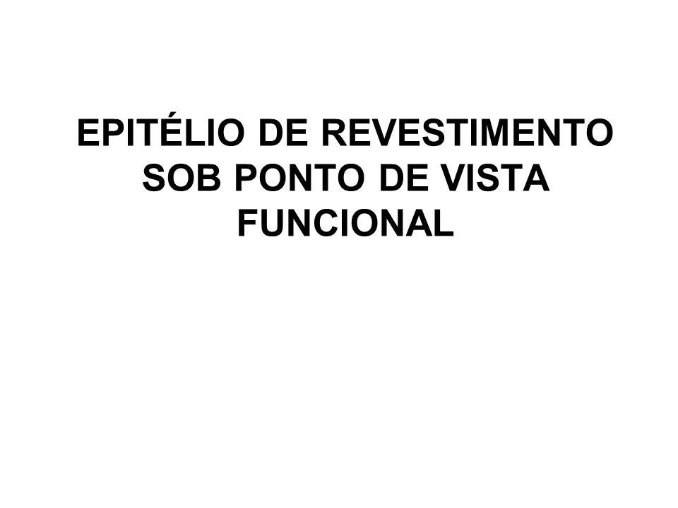 EPITÉLIO DE REVESTIMENTO SOB PONTO DE VISTA FUNCIONAL