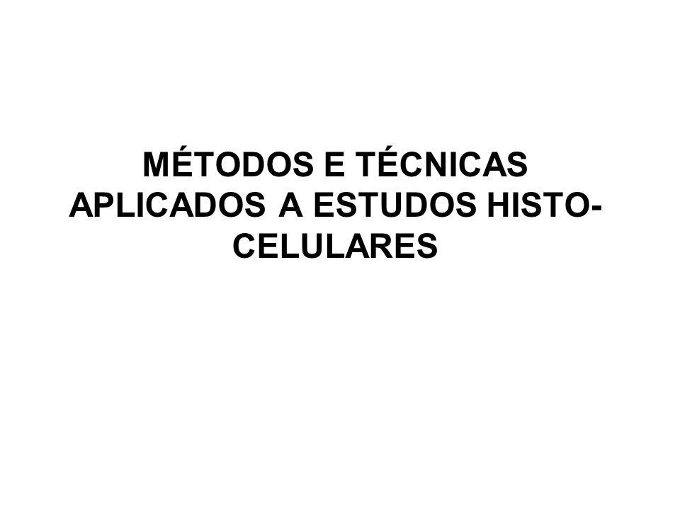 MÉTODOS E TÉCNICAS APLICADOS A ESTUDOS HISTO- CELULARES