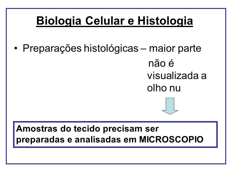 Preparações histológicas – maior parte não é visualizada a olho nu Amostras do tecido precisam ser preparadas e analisadas em MICROSCOPIO Biologia Cel