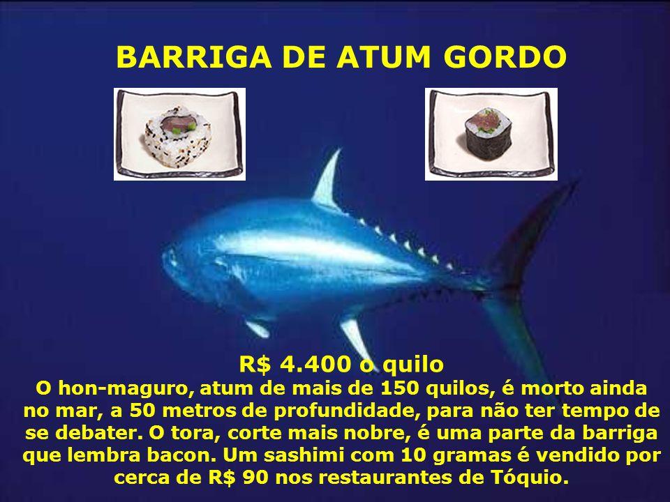 R$ 4.400 o quilo O hon-maguro, atum de mais de 150 quilos, é morto ainda no mar, a 50 metros de profundidade, para não ter tempo de se debater. O tora