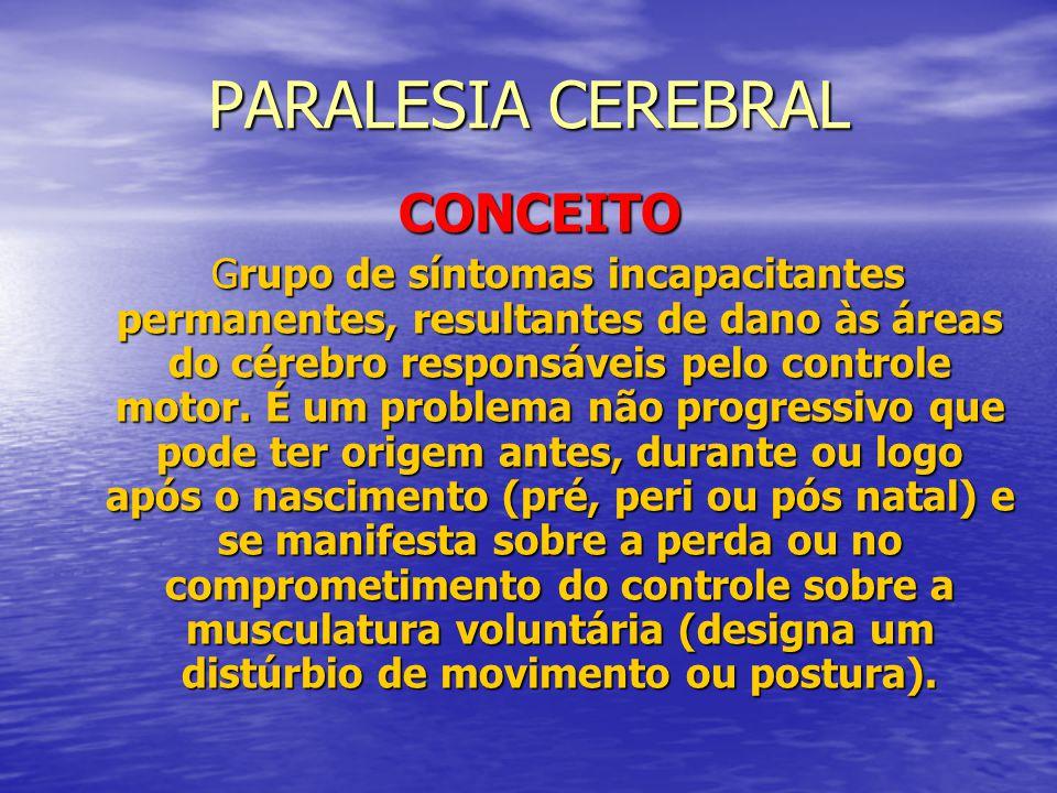 DF – CAUSAS MAIS COMUNS PARALISIA CEREBRAL PARALISIA CEREBRAL HEMIPLEGIAS HEMIPLEGIAS LESÃO MEDULAR LESÃO MEDULAR AMPUTAÇÕES AMPUTAÇÕES MALFORMAÇÕES CONGÊNITAS MALFORMAÇÕES CONGÊNITAS ARTROPATIAS ARTROPATIAS