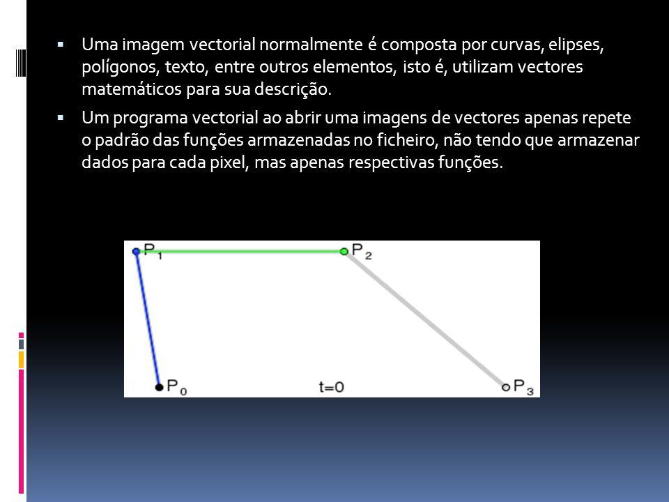 Uma imagem vectorial normalmente é composta por curvas, elipses, polígonos, texto, entre outros elementos, isto é, utilizam vectores matemáticos para