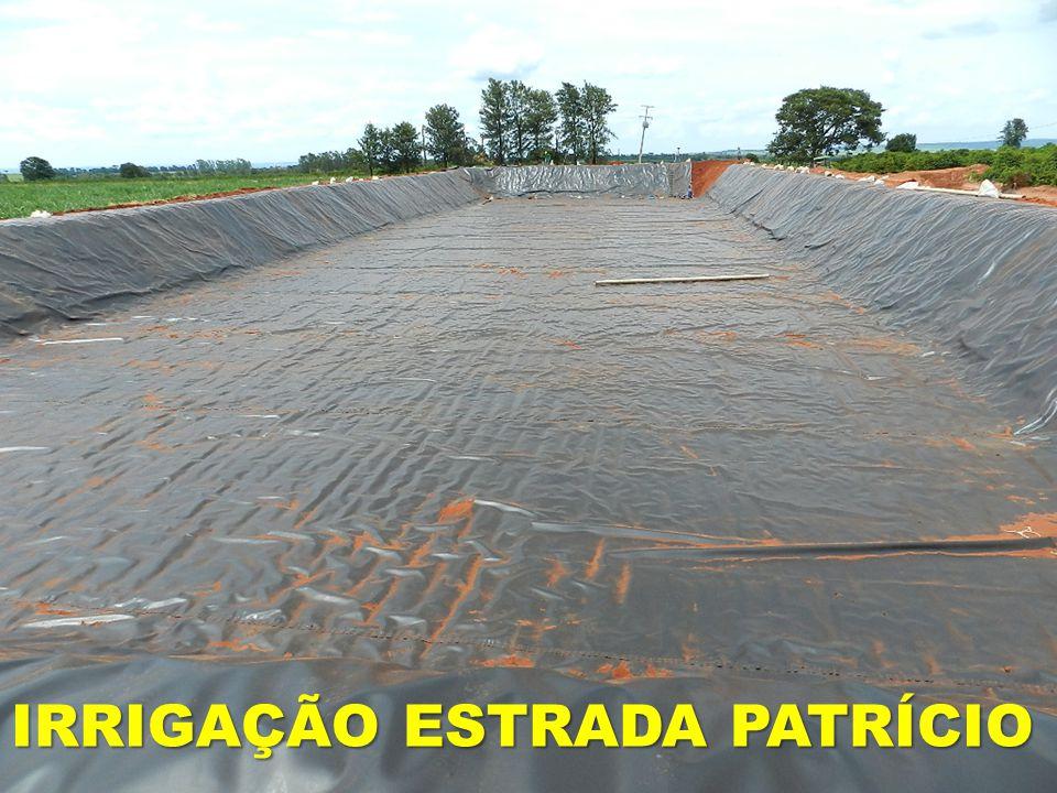 IRRIGAÇÃO ESTRADA PATRÍCIO