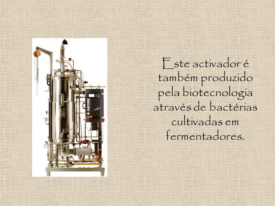 Activador de Plasminogénio É uma enzima responsável pela activação de uma pro-enzima (enzima inactiva), através da quebra de ligações peptídicas, tran