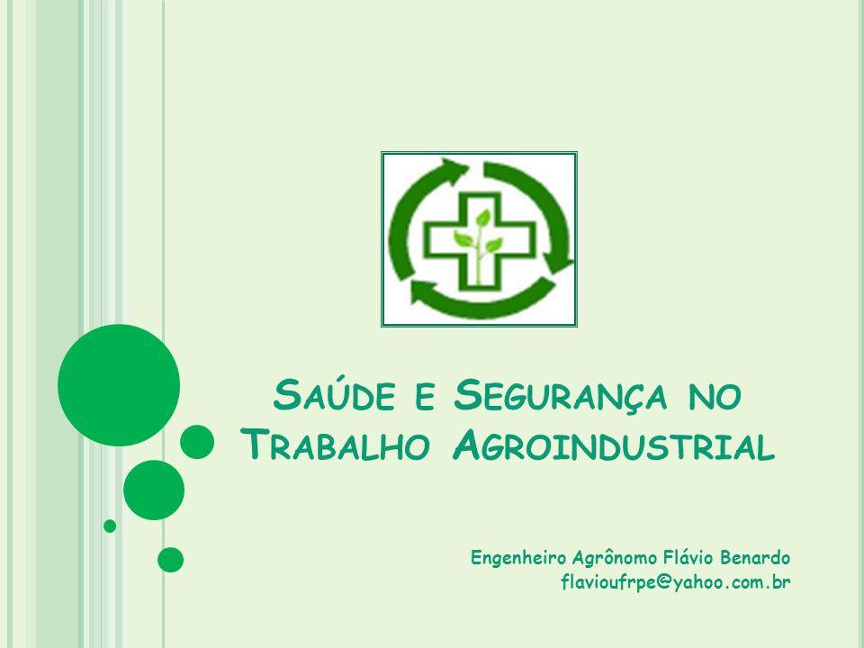 S AÚDE E S EGURANÇA NO T RABALHO A GROINDUSTRIAL Engenheiro Agrônomo Flávio Benardo flavioufrpe@yahoo.com.br
