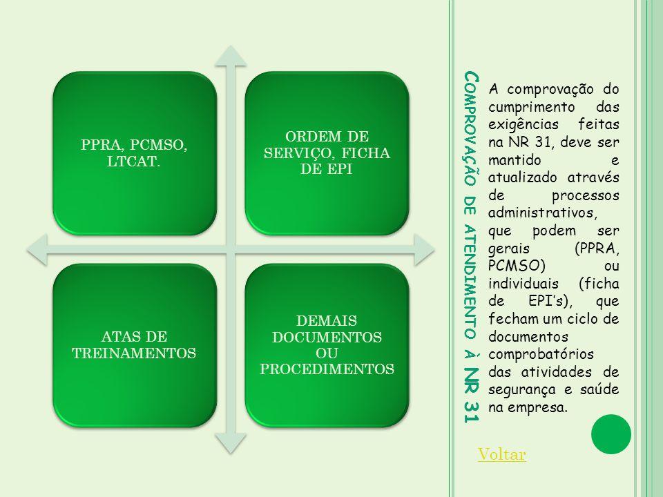 C OMPROVAÇÃO DE ATENDIMENTO À NR 31 A comprovação do cumprimento das exigências feitas na NR 31, deve ser mantido e atualizado através de processos ad