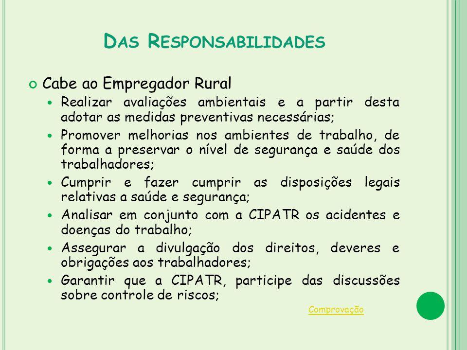 D AS R ESPONSABILIDADES Cabe ao Empregador Rural Realizar avaliações ambientais e a partir desta adotar as medidas preventivas necessárias; Promover m