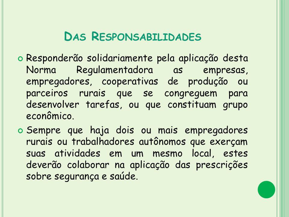 D AS R ESPONSABILIDADES Responderão solidariamente pela aplicação desta Norma Regulamentadora as empresas, empregadores, cooperativas de produção ou p
