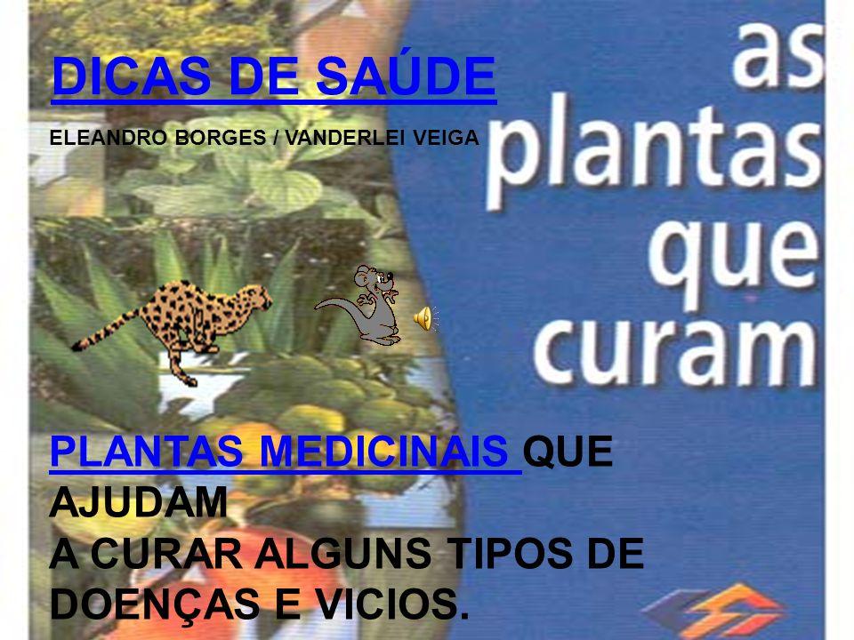 DICAS DE SAÚDE ELEANDRO BORGES / VANDERLEI VEIGA PLANTAS MEDICINAIS PLANTAS MEDICINAIS QUE AJUDAM A CURAR ALGUNS TIPOS DE DOENÇAS E VICIOS.