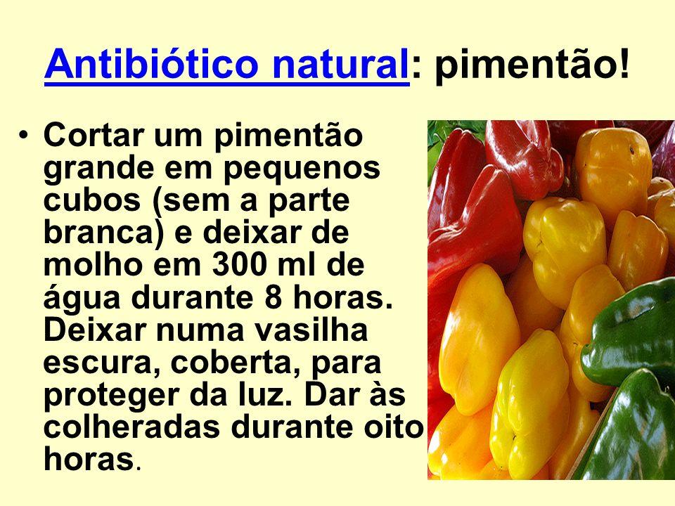 Antibiótico naturalAntibiótico natural: pimentão! Cortar um pimentão grande em pequenos cubos (sem a parte branca) e deixar de molho em 300 ml de água