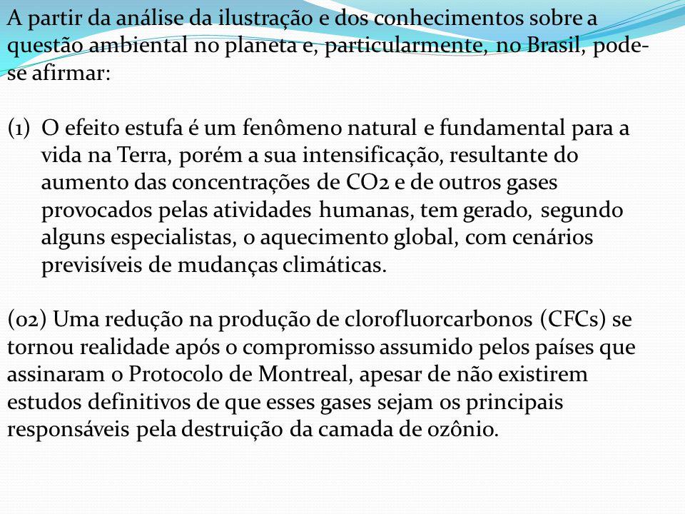 A partir da análise da ilustração e dos conhecimentos sobre a questão ambiental no planeta e, particularmente, no Brasil, pode- se afirmar: (1)O efeit