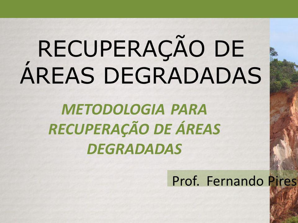 RECUPERAÇÃO DE ÁREAS DEGRADADAS METODOLOGIA PARA RECUPERAÇÃO DE ÁREAS DEGRADADAS Prof.