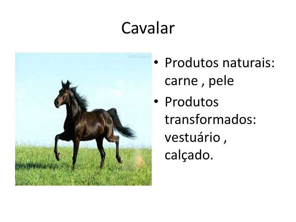 Cavalar Produtos naturais: carne, pele Produtos transformados: vestuário, calçado.
