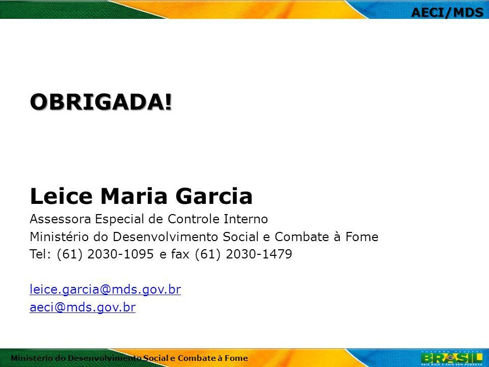 OBRIGADA! Leice Maria Garcia Assessora Especial de Controle Interno Ministério do Desenvolvimento Social e Combate à Fome Tel: (61) 2030-1095 e fax (6