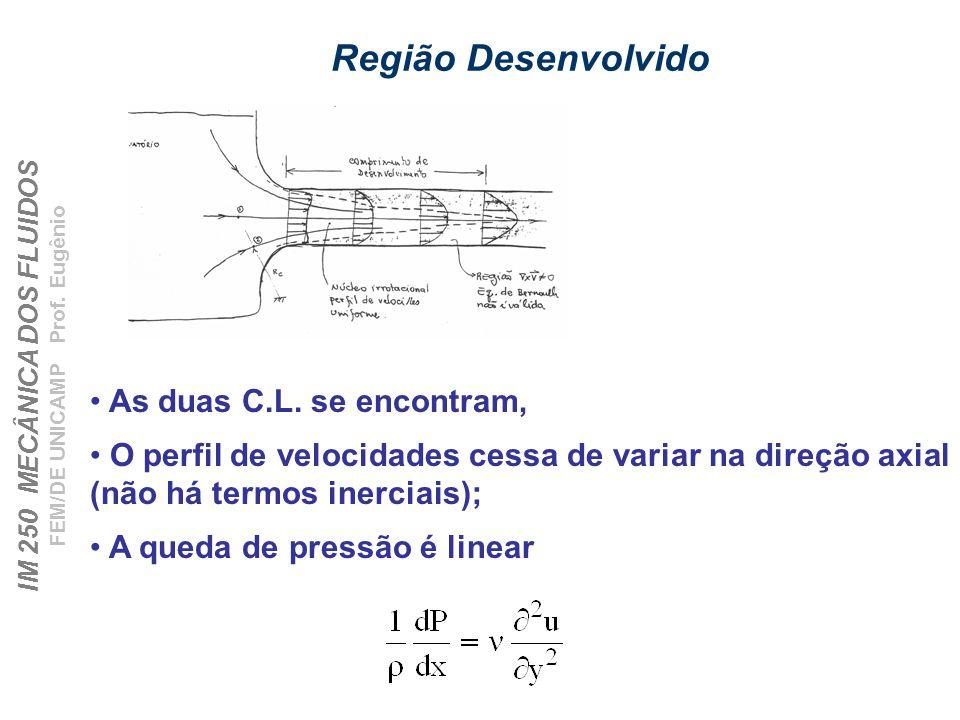 IM 250 MECÂNICA DOS FLUIDOS FEM/DE UNICAMP Prof.Eugênio Região Desenvolvido As duas C.L.