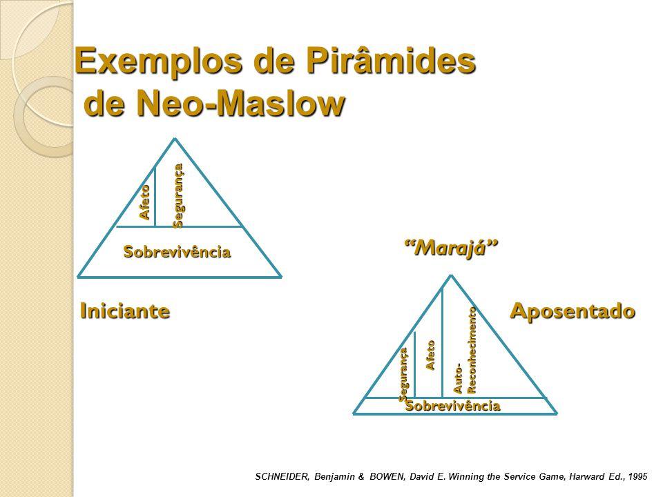 Outras teorias sobre a motivação humana Modelo contingencial de Vroom Modelo de Expectância Teoria dos fatores higiênicos e motivacionais de Herzberg