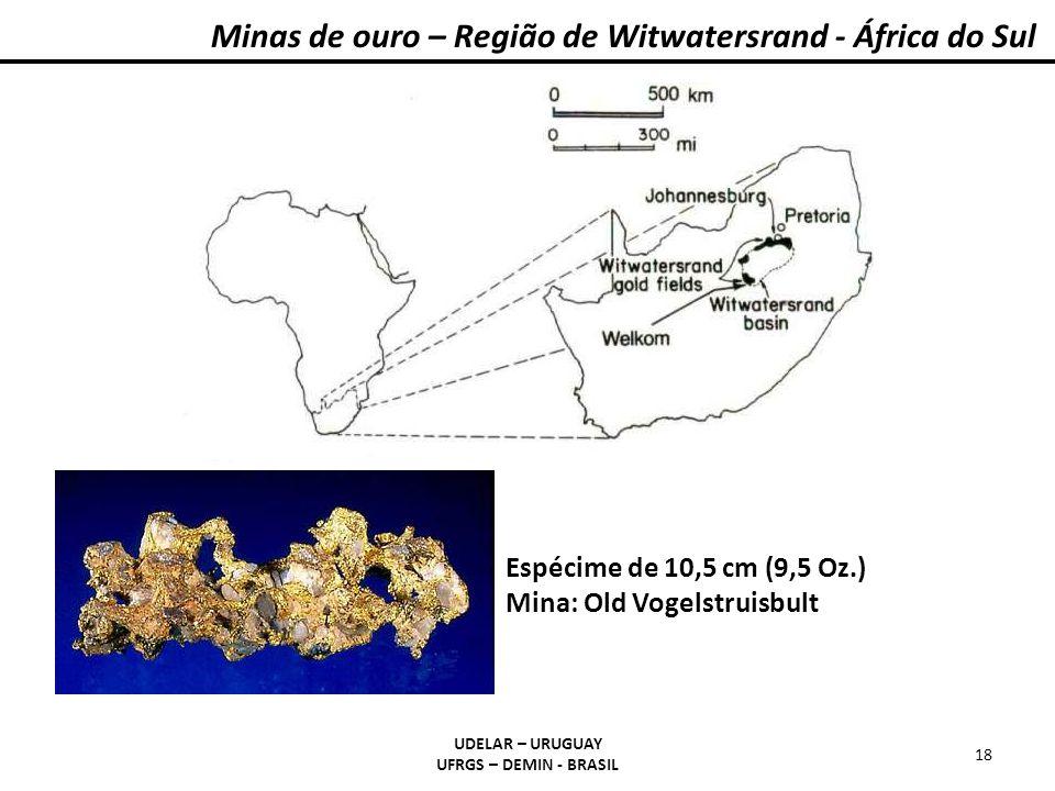 Minas de ouro – Região de Witwatersrand - África do Sul UDELAR – URUGUAY UFRGS – DEMIN - BRASIL 18 Espécime de 10,5 cm (9,5 Oz.) Mina: Old Vogelstruis