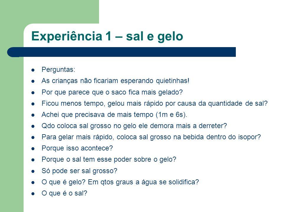 Experiência 1 – sal e gelo Perguntas: As crianças não ficariam esperando quietinhas.