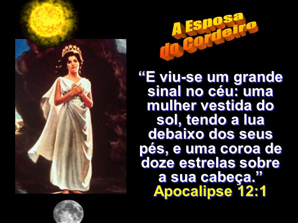 --------------------------- E viu-se um grande sinal no céu: uma mulher vestida do sol, tendo a lua debaixo dos seus pés, e uma coroa de doze estrelas sobre a sua cabeça.
