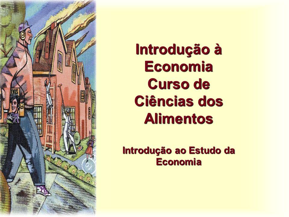 Objetivos do Curso u Este curso visa apresentar os princípios da teoria microeconômica e macroeconômica de modo a permitir aos alunos o entendimento do que vem a ser economia e qual o seu objeto de estudo.
