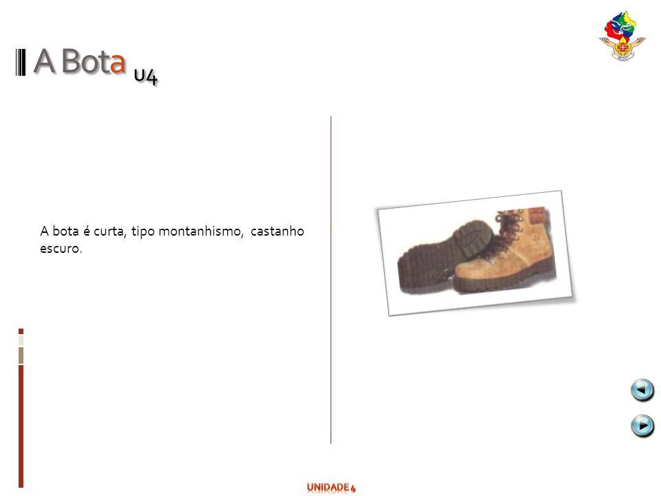 A Bota u4 A bota é curta, tipo montanhismo, castanho escuro.