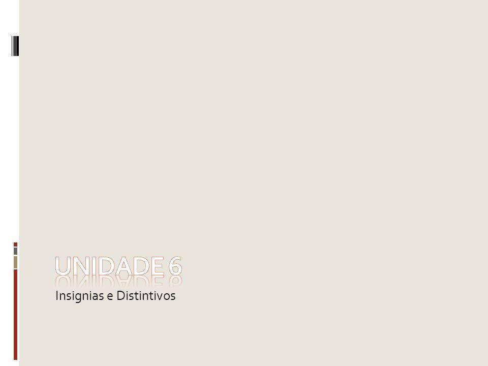 Insignias e Distintivos