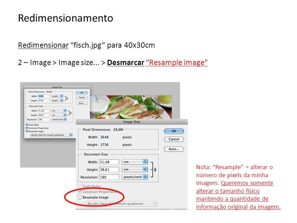 Redimensionamento Redimensionar fisch.jpg para 40x30cm 3 – Digite a medida desejada Repare que ao desmarcar o resample image, alteramos o tamanho físico da imagem, sem alterar a quantidade de pixels presentes nela.