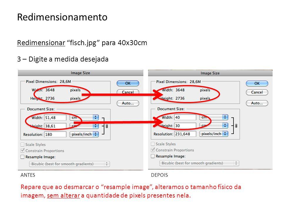 Redimensionamento Redimensionar fisch.jpg para 40x30cm -Reduzir a resolução (ppi) - Automaticamente reduz o número de pixels - Sem reduzir o tamanho físico - Arquivo mais leve 4 – Outra situação: quero reduzir a imagem para enviá-la por e-mail.