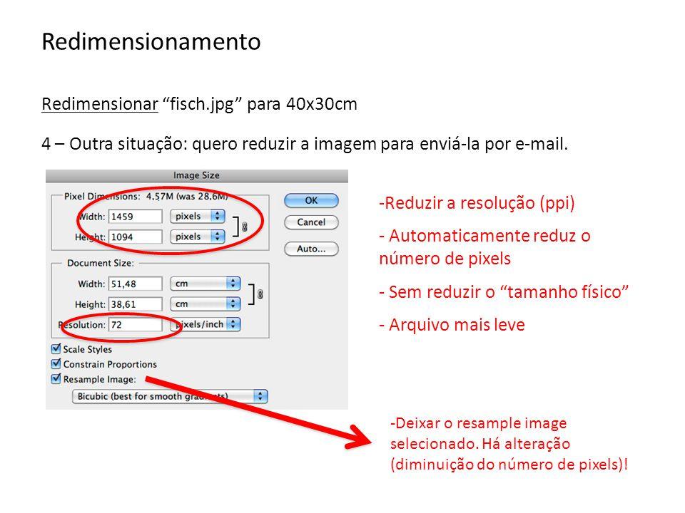 Redimensionamento Redimensionar fisch.jpg para 40x30cm -Reduzir a resolução (ppi) - Automaticamente reduz o número de pixels - Sem reduzir o tamanho f