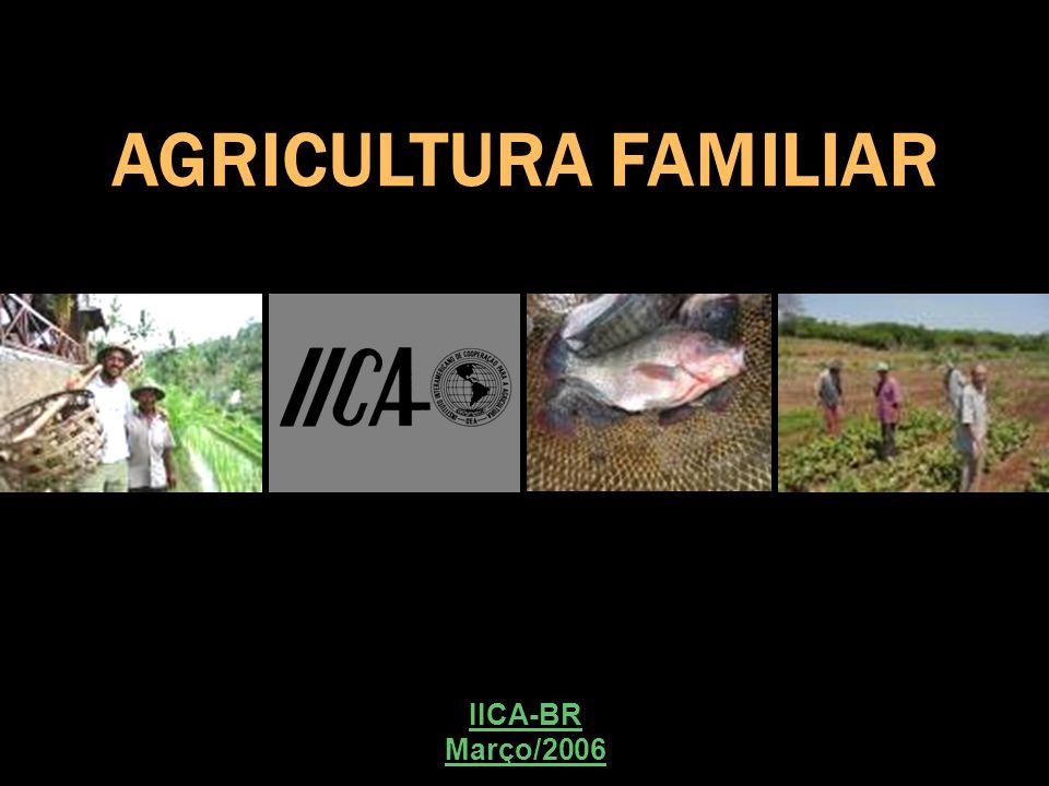 AGRICULTURA FAMILIAR IICA-BR Março/2006